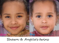 Shawn and Angela's possible twins
