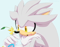 Silver and his Pikmin - silver-the-hedgehog photo