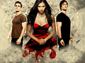 TVD - the-vampire-diaries wallpaper
