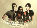 the-vampire-diaries - TVD wallpaper
