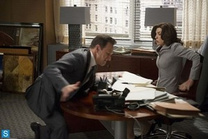 The Good Wife - Episode 5.05 - Hitting the fã - Promotional fotografias