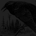 The Raven - edgar-allan-poe icon
