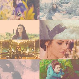 Twilight saga...FOREVER
