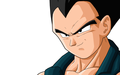 Vegeta - dragon-ball-z photo