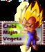 Vegeta - prince-vegeta icon