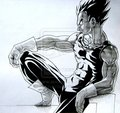 Vegeta - vegeta photo