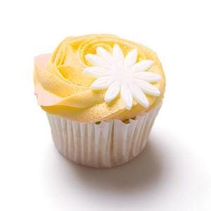 Yellow 纸杯蛋糕