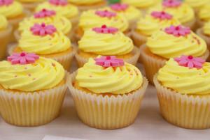 Yellow 컵케익