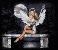 angelz - angels photo