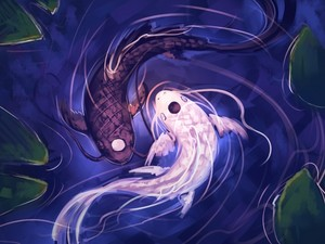 avatar ying yang fishes