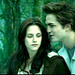 ♥  - the-cullens-coven icon