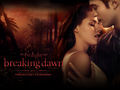 ♥ Edward & Bella BD pt. 1