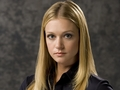 AJ Cook - aj-cook wallpaper