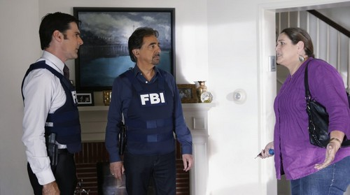 SSA Aaron Hotchner wallpaper probably with a well dressed person entitled Aaron Hotchner