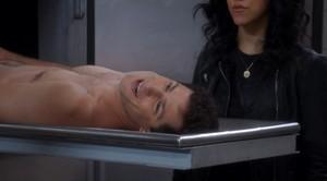 Autopsy Sex