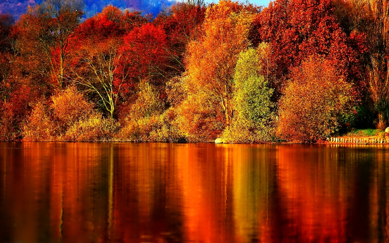 autumn images autumn wallpaper hd wallpaper and background