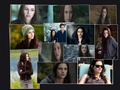 Bella in Eclipse - twilight-series wallpaper