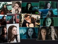 Bella in Twilight - twilight-series wallpaper