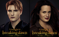Breaking Dawn Carlisle & Esme