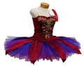 Colourful Tutu - ballet photo