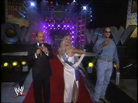 Bekas Diva WWE... Debra kertas dinding probably with a konsert and a bridesmaid called Debra - Four Horsemen Documentary