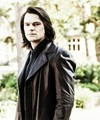 Dimitri ♥ - dimitri-belikov photo
