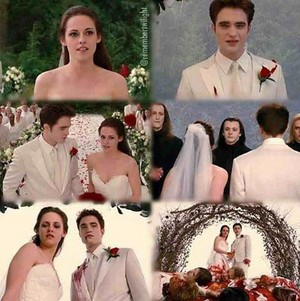 Bella's wedding nightmare