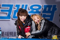 Ellin & Soyul at Crayon Pop's first fan meeting - crayon-pop photo