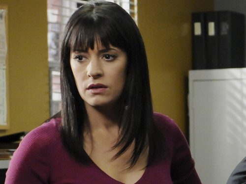 Emily Prentiss 壁纸 possibly with a portrait entitled Emily Prentiss