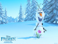 Frozen Wallpapers