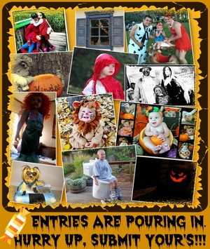 Halloween foto Contest 2013