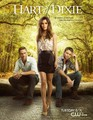 Hart of Dixie posters - hart-of-dixie photo
