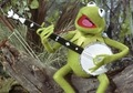 Kermy - kermit-the-frog photo