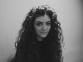 Lorde - sweety63 photo