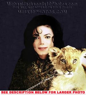 Michael Jackson With A Lion Cub