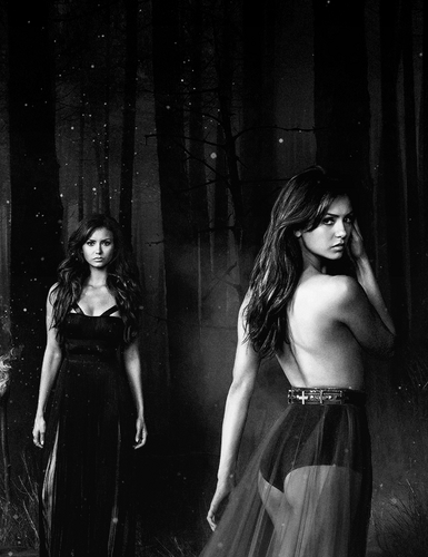 Katherine Pierce and Elena Gilbert wallpaper probably containing a makan malam dress and a koktil, koktail dress called Nina Dobrev - The Vampire Diaries season 5 promo shoot