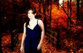 Shannen Doherty - shannen-doherty fan art