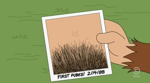Brickleberry wallpaper with a broom called Steve's First Pubes