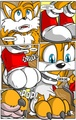 Tails the Werefox Transformation