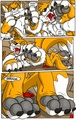 Tails the Werefox Transformation - miles-tails-prower photo