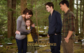 The Cullens & Jacob