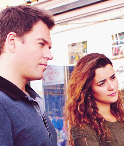 Tiva fondo de pantalla containing a portrait called Tony and Ziva