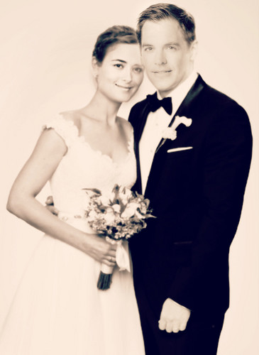 Tiva fondo de pantalla probably containing a bridesmaid titled Tony and Ziva wedding día :)