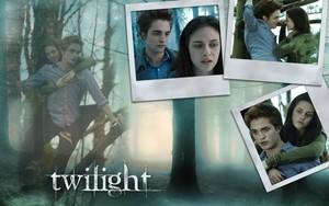 Twilight fondo de pantalla
