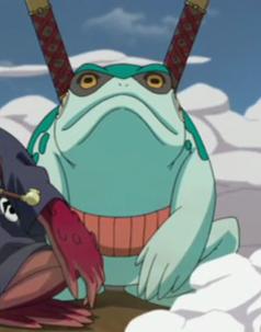 Various toads