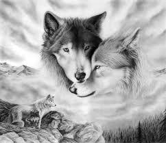 WOLFS!!!!!!!!!!!!