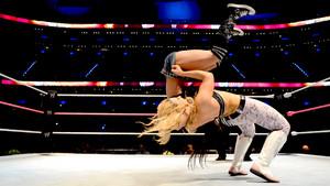 WWE Worldwide 2013 - Mexico City, Mexico