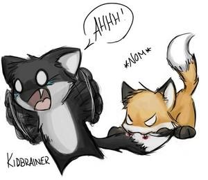 fox, mbweha