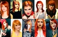 hayley collage - hayley-williams photo