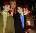 hp - harry-potter-fans photo
